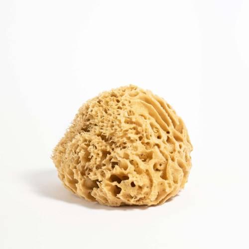 Grace and Green - YOKU Natural Sea Sponge (medium) - 1