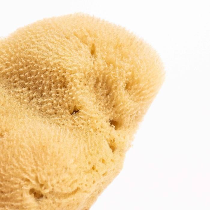 Grace and Green - YOKU Natural Sea Sponge (small) - 2